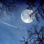 Éves horoszkóp - 2020